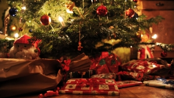 Lugn jul