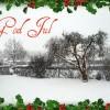 God jul alla läsare