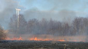 Hög risk för skogsbrand