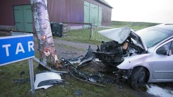 Bil in i träd på väg110