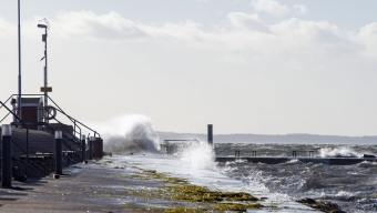 Stormbyarna uteblev i Landskrona