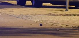 Misstänkt farligt föremål på Föreningsgatan