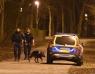 Misstänkt skottlossning i Karlslundsparken
