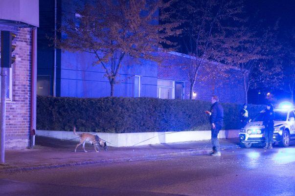 Vid 23:30 inträffade en våldsam singelolycka i Landskrona. En polispatrull kör av en slump förbi mindre än en minut efter olyckan inträffat. Föraren smiter från platsen och kvar utanför bilen finns en skadad passagerare. Polisen söker med hund. Man får upp ett bra spår och söket går flera kvarter bort, men föraren anträffas inte. Bilen bärgas från platsen.