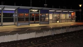 En person greps på Häljarp station efter misshandel