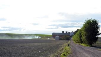 Gräsbrand visade sig vara kontrollera eldning