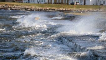 Film från stormen