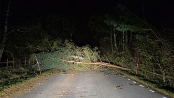 Fler bilder och film från stormen