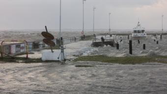 Läsarbild: Borstahusens hamn
