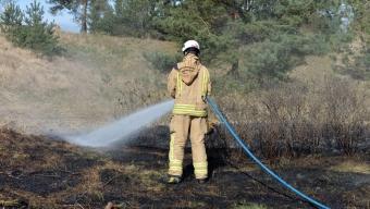 E6: Gräsbrand vid Häljarp