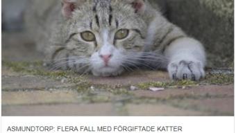Förgiftade katter i Munkebäck, Asmundtorp