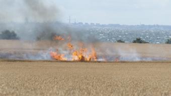 Brand på fält